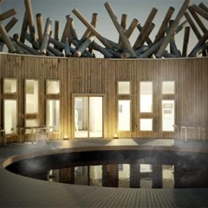 arctic spa bath