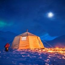 Husky sledding in Svalbard
