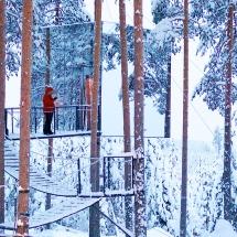 Mirror cube Treehotel Sweden