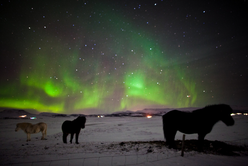 Perfect ... Northern Lights Small Group Tour In Iceland ... Nice Look