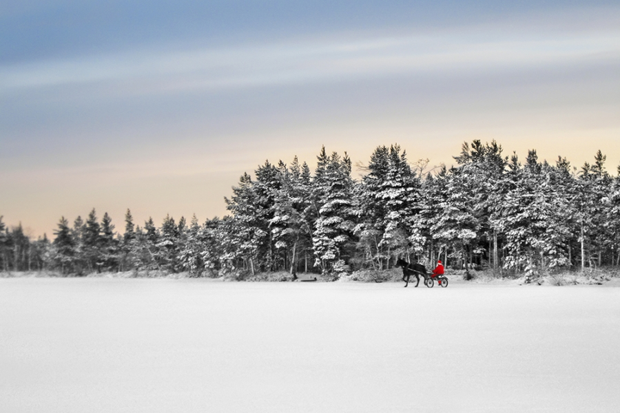 Christmas in finnish lapland and the northern lights winter holiday enquire solutioingenieria Gallery