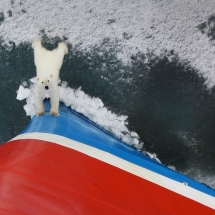 Expedition Cruise to Svalbard
