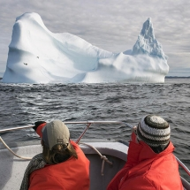 Iceberg watching
