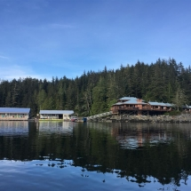 Lodge and water based rooms