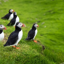 Self guided cycling holiday in the Faroe Islands