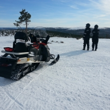 Snowmobile safari views