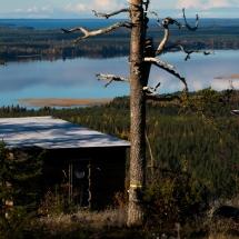 Giant Bird House View