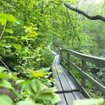 Tourujoki nature trail