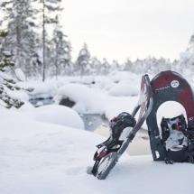 Snowshoe adventures