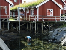 The traditional Rorbu cabins typical of the Lofoten Islands