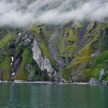 Weekend wildlife expedition cruise in Svalbard